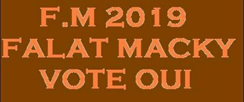 Marche patriotique le Vendredi 18 Mars pour un « OUI » massif au référendum