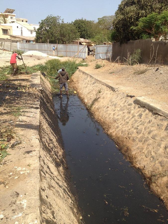 CURAGE DU CANAL DE LA SICAP KARACK : Barthélémy Dias veut fermer ce canal
