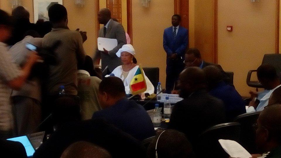 Début des consultations diplomatiques Sénégal Gambie : Sept ministres sénégalais sont présents