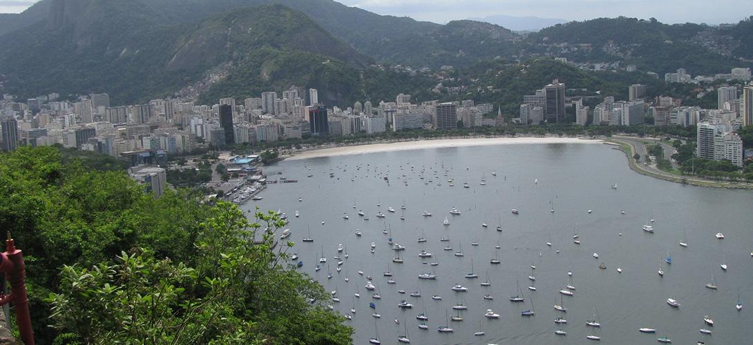 À Rio, «les athlètes vont littéralement nager dans de la merde humaine»
