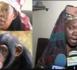 La Tante de Ama Baldé menace : « Selbé Ndom dina ko def golo »