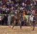 DRAPEAU ALIMA NDIONE : après 7ans sans combat, Aliou Mané battu par Khéweul sur décision arbitrale