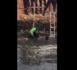 PATTE D'OIE : Un enfant de 12 ans tombe dans une fosse et meurt