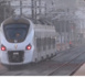 Sécurité autour du TER : Le chef de l'État prévoit 58 passerelles et invite les riverains à faire attention