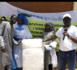 Campagne agricole 2019-2020/ Godaguène Sorokh :  Distribution des sacs de mil labellisés et contractualisation entre PMP et Fournisseurs d'intrants par le projet PSEM