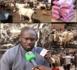 Maouloud 2019 : Abdou Aziz Ndiaye convoie des bœufs pour un bon Gamou et attend le