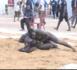 Journée Djibson Prod : Mbaye Feugeuleu plaque au sol Boy Caïman