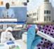 Coronavirus : Le Sénégal franchit le seuil des 200 contaminés, un mois après le premier cas recensé.