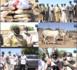 (VIDEO) DIOURBEL / Dame Diop et Pape Modou Fall au chevet des daaras du quartier Keur Cheikh.