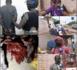 Deux bouchers surpris en train de dépecer deux chevaux à Yarakh : Les Sénégalais indexent les autorités...