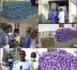 Gamou 2020 : Auchan remet au Khalife de Médina Baye un important lot de denrées alimentaires.