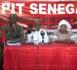 Situation en Guinée et en Côte-d'Ivoire : Le PIT/Sénégal se démarque d'un 3ème mandat et appelle les acteurs au calme et à la retenue.