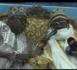 Caricatures du Prophète : Imam Cheikh Tidiane Alioune Cissé pique une colère noire contre Macron.