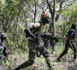 Forêt classée de Bayotte : 09 exploitants forestiers tabassés par des hommes armés.