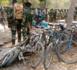 Opération de sécurisation en Casamance : Quelques questions à la DIRPA. (Par Daouda Gbaya )