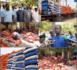 Kaolack / Appui Ramadan : 50 tonnes de riz et 5.000 kits alimentaires offerts aux populations par Pape Demba Bitèye.