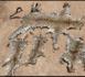 Criminalité faunique : 3 présumés trafiquants de peaux de léopard arrêtés à Tamba, les méthodes cruelles de piégeage des fauves.