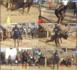 Choc contre Ama Baldé : les entraînements intenses du Roi des arènes Modou Lo.