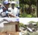 Thiès / Cri du coeur des victimes : Vaste opération de démolition à Colobane Tanghor par la Descos assistée de militaires de la Zone7.