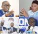 Coalition Wallu Sénégal : Bokk Gis Gis se démarque et dépose sa propre caution.