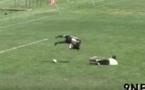 Un salto devant le gardien: un but dingue venu des États-Unis (vidéo)