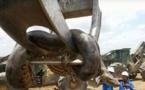 Un gigantesque anaconda découvert sur un chantier au Brésil