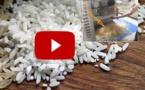 Faites attention à ce que vous achetez – le riz en plastique se répand en Asie