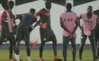 Séance d'entraînement des Lions après la victoire contre la Tunisie (vidéo)