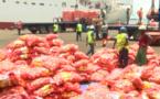 Approvisionnement correct du marché en oignon : 7.000 tonnes déjà disponibles