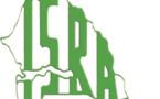 Précarité autour du système national de recherche agricole : les travailleurs de l'ISRA alertent le Gouvernement