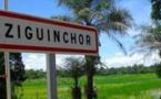 Coupe clandestine de bois : Arrestation du maire d'Oulampane