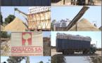 Kaolack / Campagne de commercialisation de l'arachide : À la date du 13 décembre, les huiliers n'ont pu collecter que 666 tonnes...
