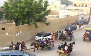 Transport à Touba : La bonne affaire pour charretiers et clando