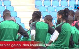 VIDÉO : Revivez le dernier galop des Lions au Havre