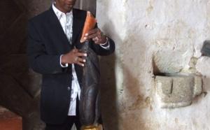 Environnement / Projet forêt bleue Sénégal : « On a perdu 3 ans parce que je dois voir un Président pendant 20 mn »   Ousmane Guèye (Architecte/Sculpteur)