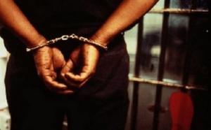 Protection de la faune : Trois trafiquants arrêtés avec des peaux de léopard