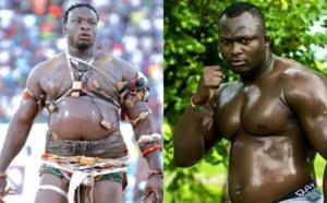 Modou Lo - Ama Baldé : Le Roi des arènes confirme le combat pour le mois de Mai.