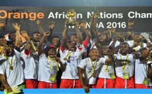 Football : la RD Congo a remporté le Championnat d'Afrique des nations 2016 grâce à sa victoire 3-0 face au Mali