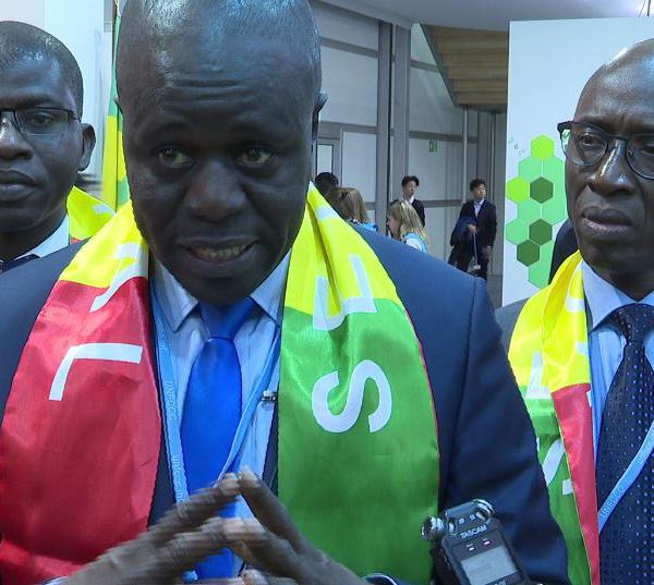 COP 24- Mame Thierno Dieng : « Le Sénégal, n'est et ne sera jamais un état climato-sceptique…»