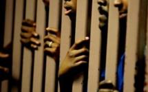 Surpopulation carcérale des prisons du Sénégal : Quelles solutions ? (par Cheikh Sadibou Doucouré)