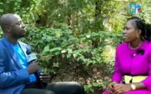 """Mme Aïssatou Ndiaye (Maire de Ndiaffate) : """" Ce qui a été fait à Ndiaffate grâce à Macky Sall (...) Les commanditaires de cette tentative de sabotage ont été identifiés """""""