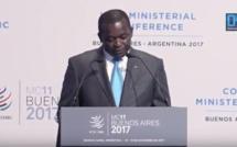 OMC / Déclaration du ministre Alioune Sarr : « Le système commercial doit être performant pour la réduction des inégalités »