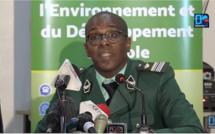 """Colonel Baïdy Bâ : """"En Casamance, il y a des zones où un agent des Eaux et Forêts accède difficilement"""""""