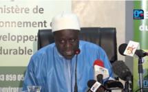 Casamance : Les précisions du ministre de l'Environnement sur la suspension de l'exploitation forestière