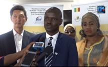 Direction de l'horticulture/SHEP : « Ce programme a contribué aux performances très satisfaisantes de l'horticulture au Sénégal. Des records de production ont été réalisés durant ces trois ans ». (Dr. Macoumba Diouf, Directeur OHORT)