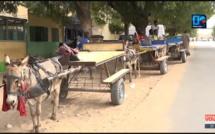ENFANTS CHARRETIERS / Fils de parents HORS-LA-LOI et futurs charretiers... Comment le Sénégal est parti pour perdre une génération ! ( le cas de Mbacké)