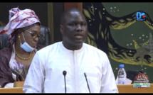 Agriculture - Chômage - Émigration clandestine : « Il faudrait que la vision du Président Macky Sall quitte Diamniadio et rejoigne la vallée du fleuve Sénégal » (Déthié Fall)