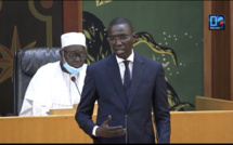 Dame Diop (Ministre de l'emploi et de la formation professionnelle) : «De 87 en 2012, nous sommes à plus de 120 structures aujourd'hui»